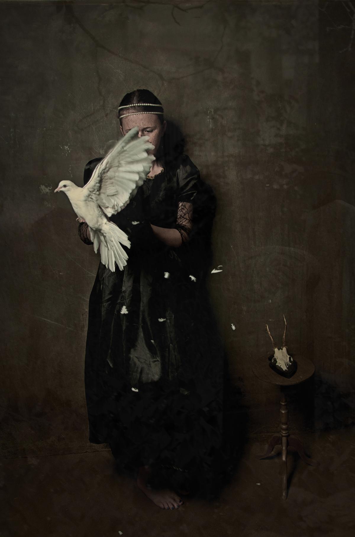 07 white dove II.jpg