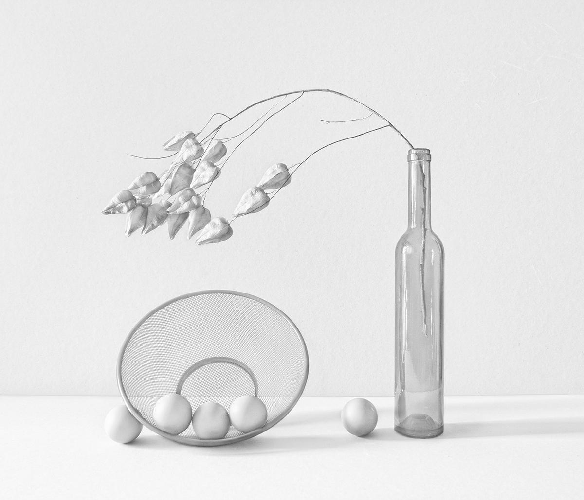 Still life in white.jpg