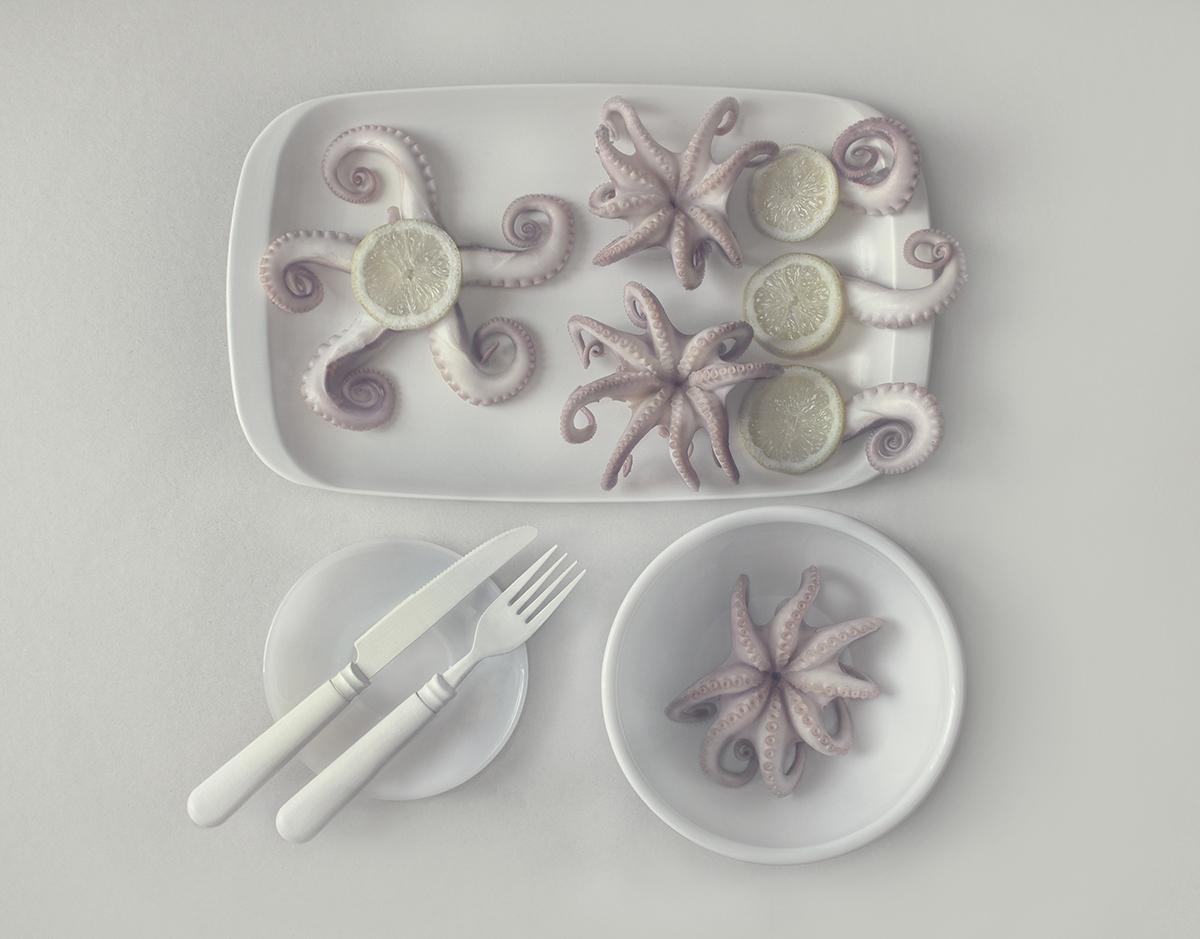 Оctopus.jpg