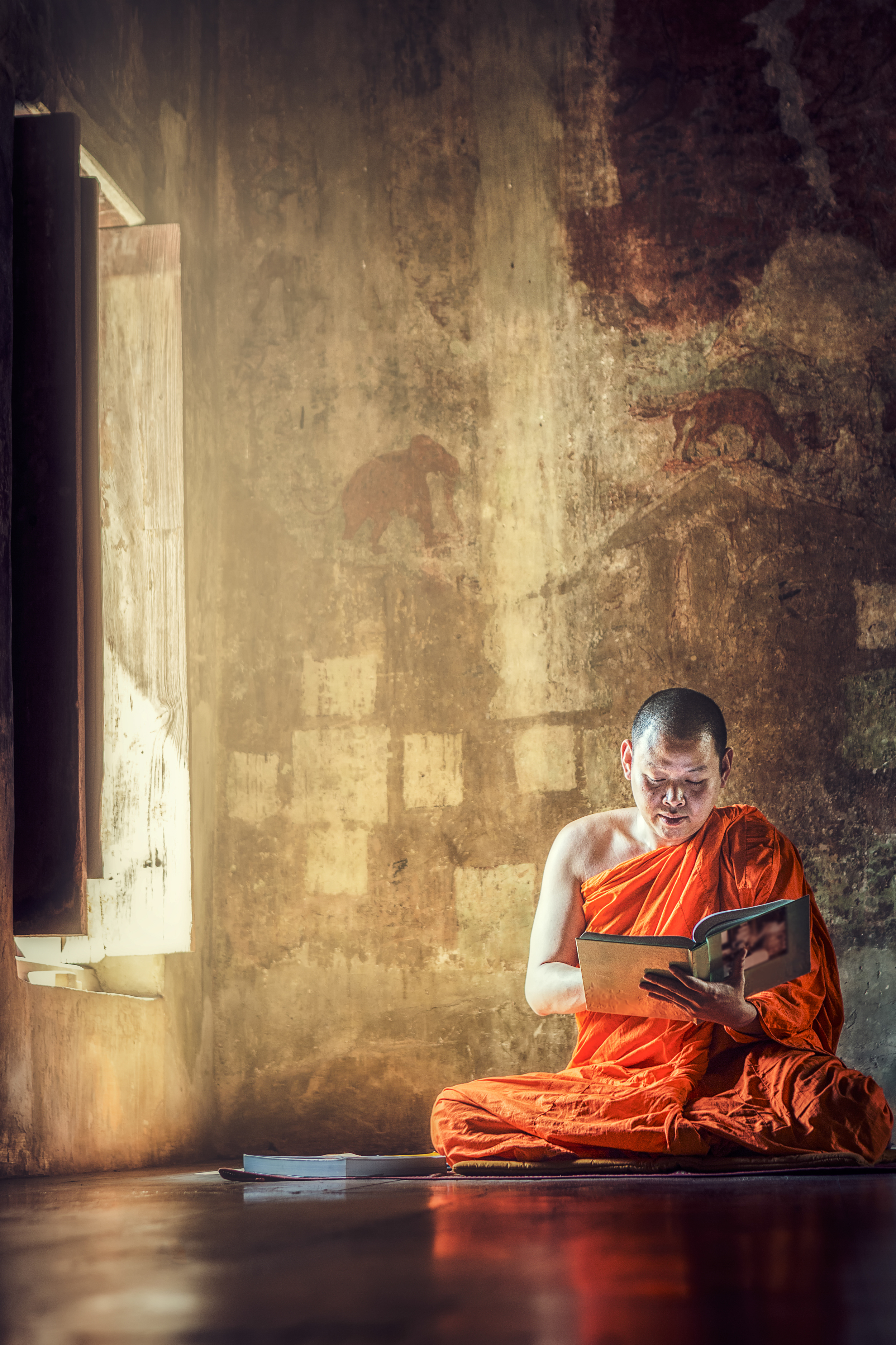 Monk reading book.jpg