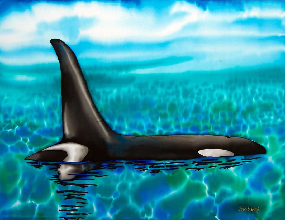 orcaSMALL.jpg