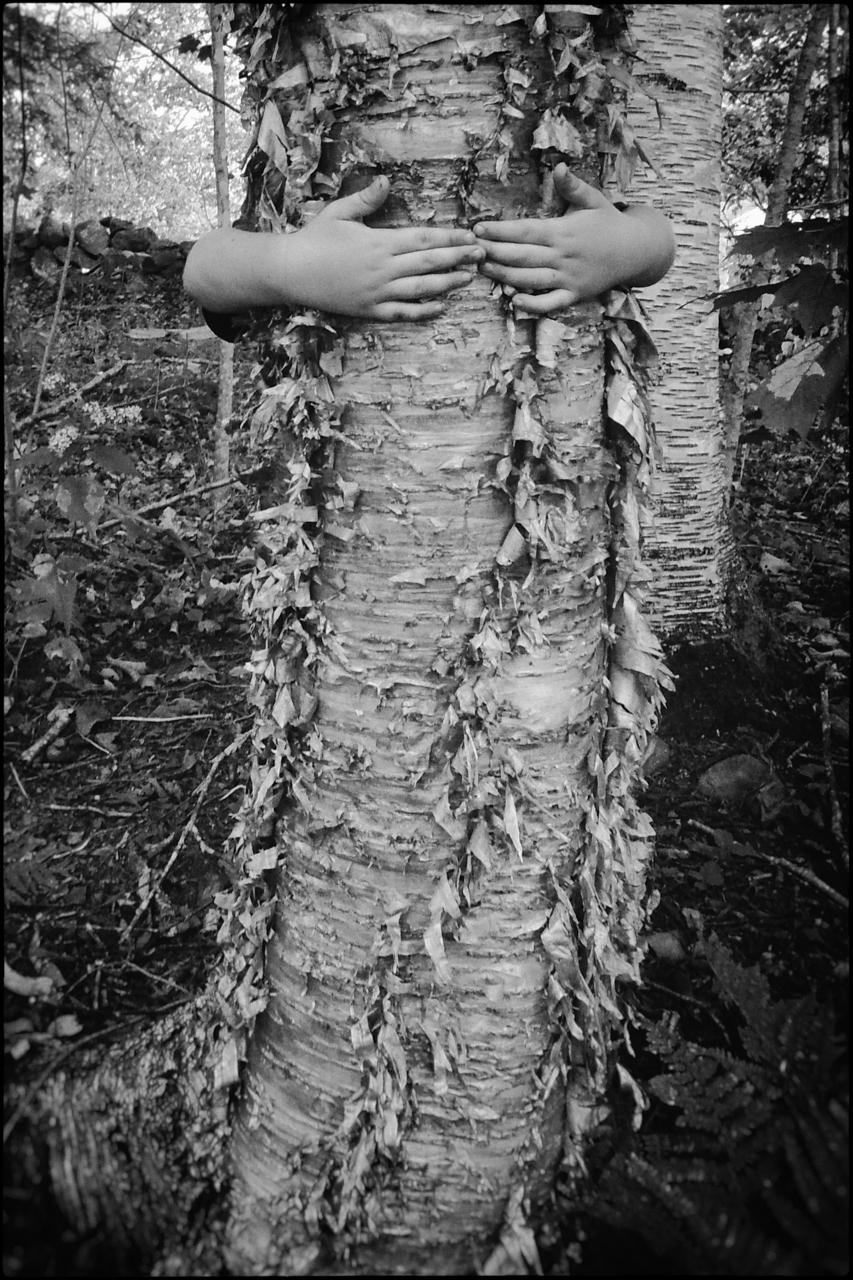 Kathryn_Oliver_Birch_Bark_Hands-5.jpg