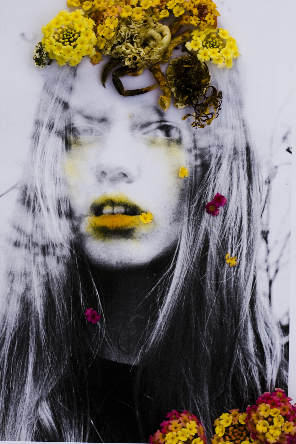 hommage of spring and death_loreen hinz (3).jpg
