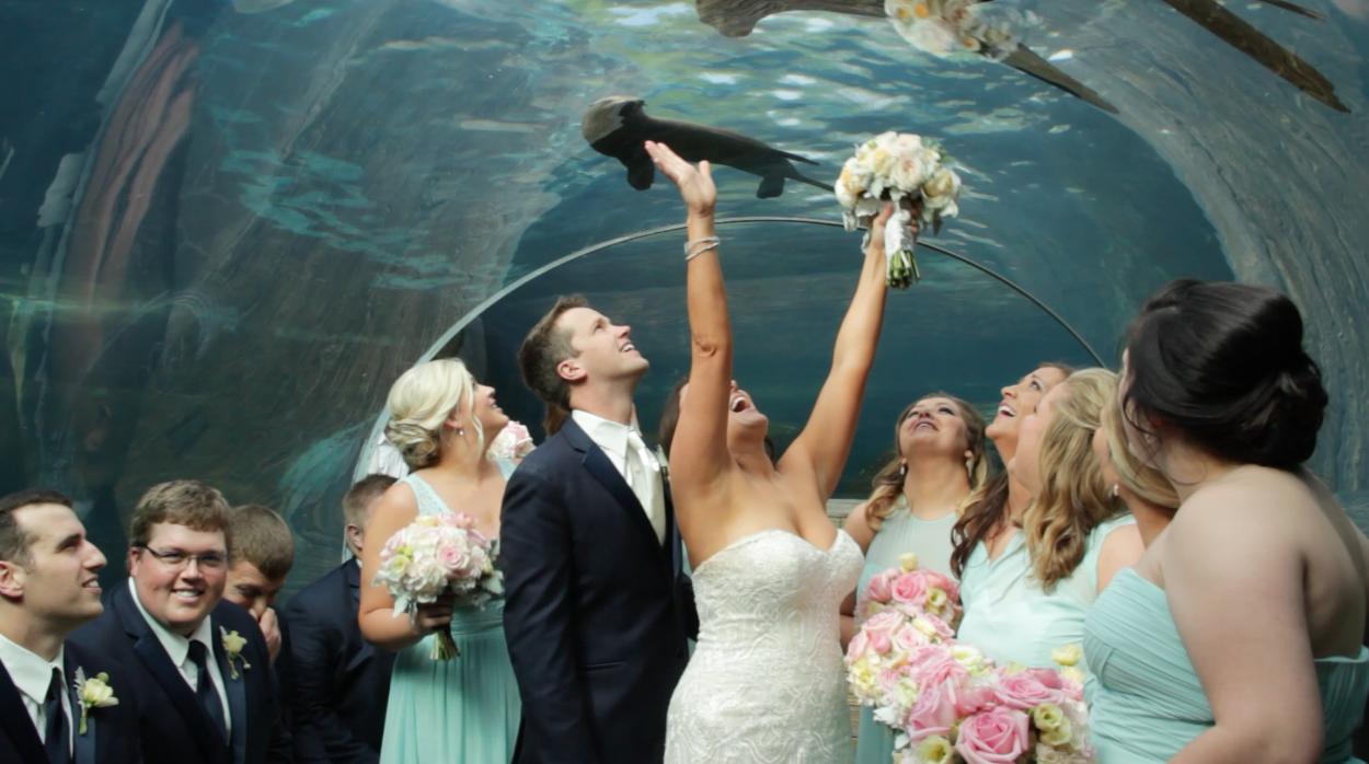 weddingattheSTLzoo