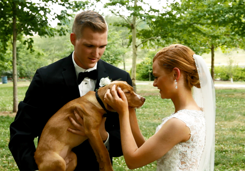 bridegroomandpuppy.jpg