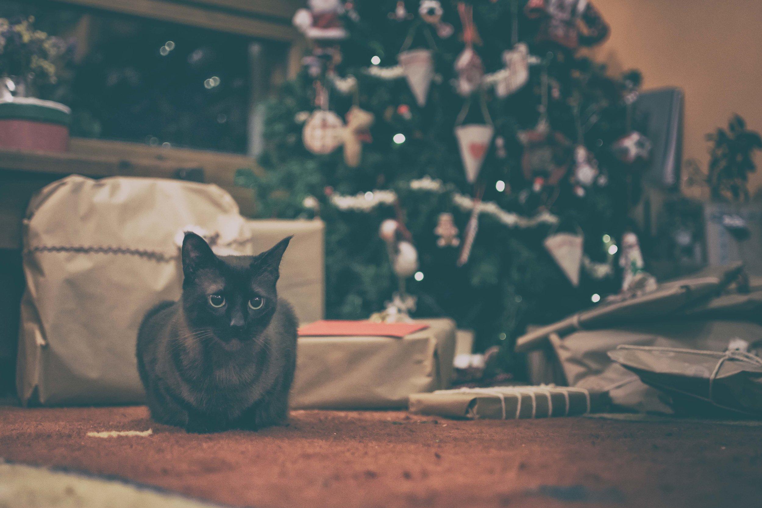 Ideas decoración Navidad-4.jpg