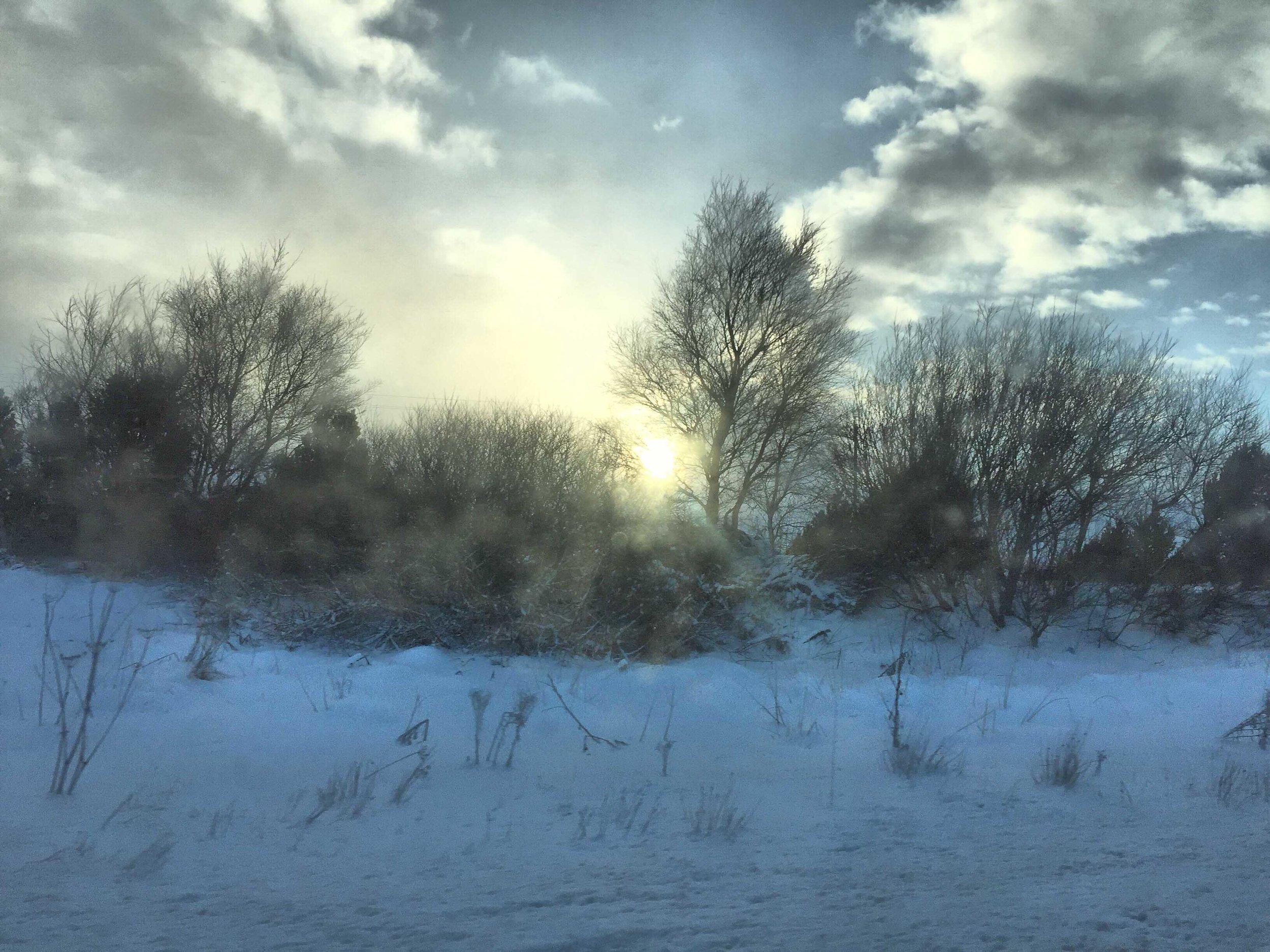 Foto hecha con el móvil cuando ya había pasado la nevada