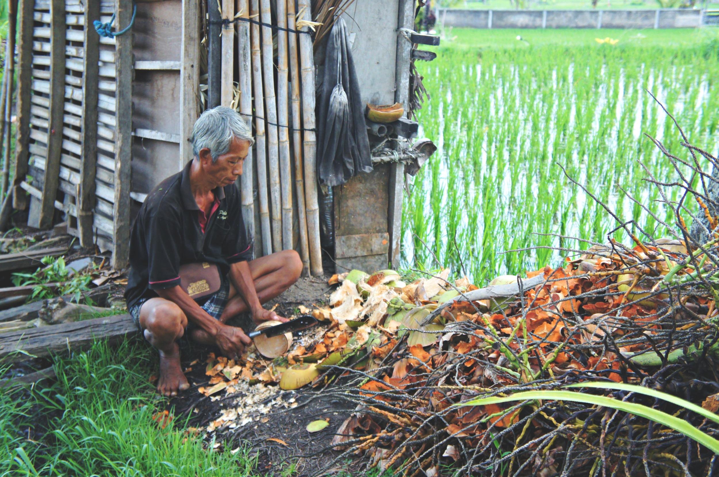 Rice Paddy Walk Man
