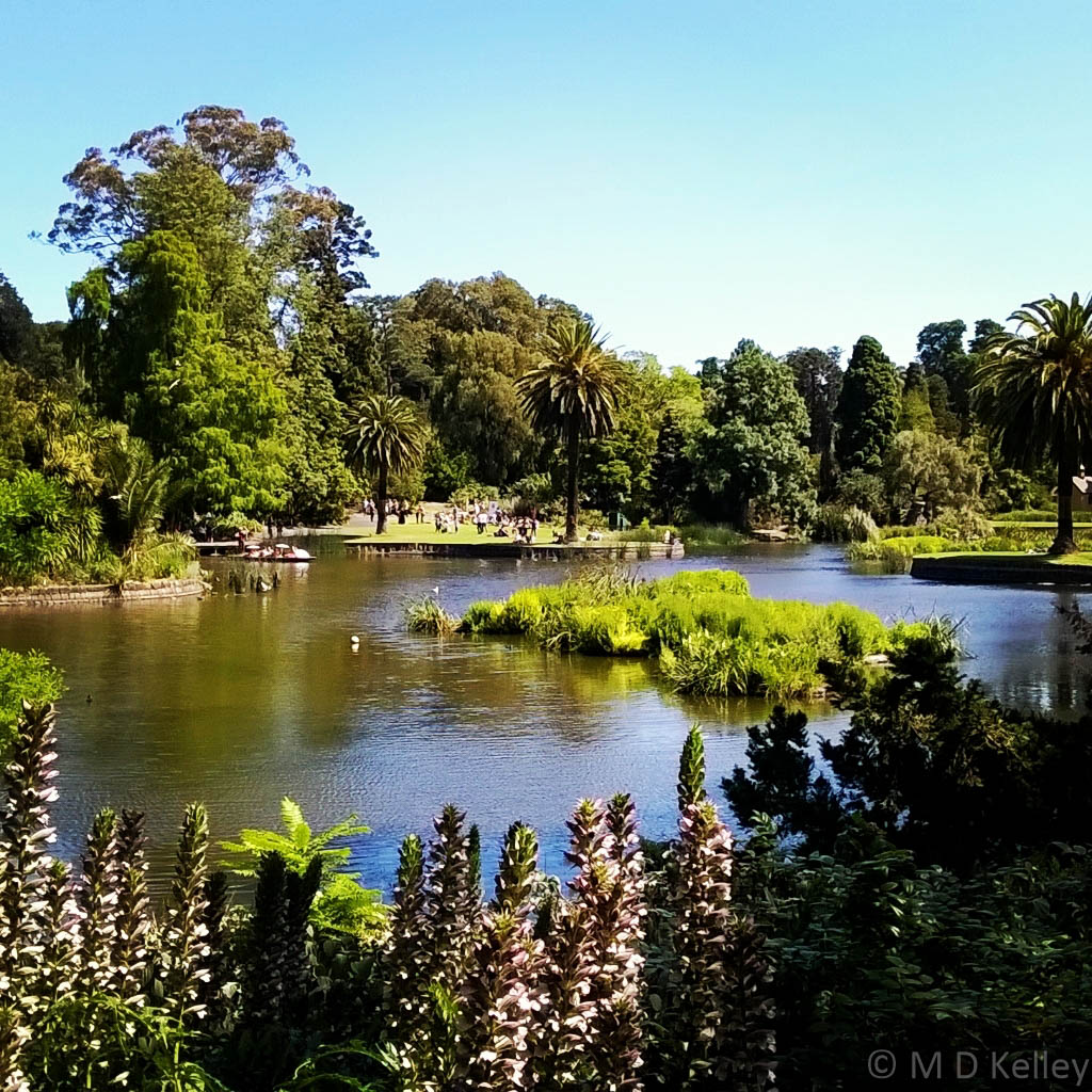 Lake at Melbourne Botanic Gardens, Windows Phone.jpg