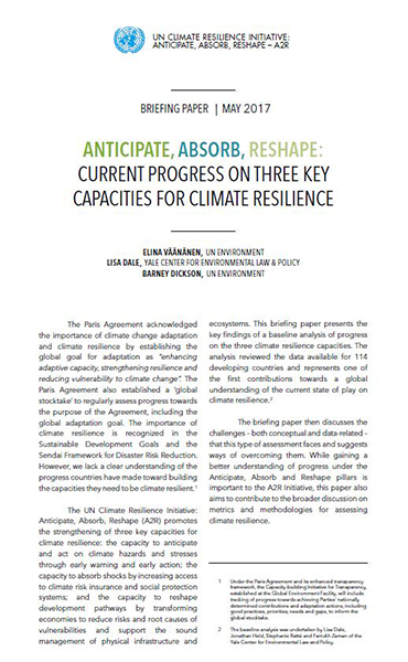 Anticipate, Absorb, Reshape: Current progress on three key capacities for climate resilience