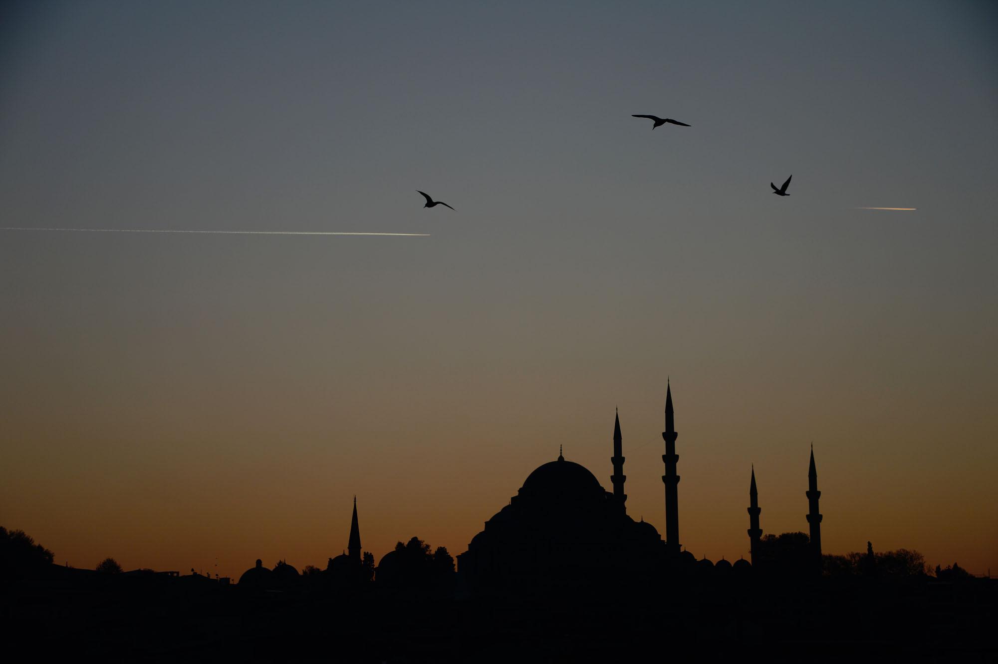 Mosque. Istanbul, Turkey.