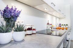 modern-kitchen-interior-design-white-color-38821056.jpg