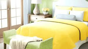 yellow:lime bedroom.jpeg