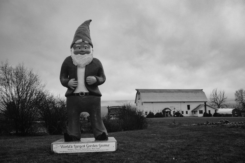 Worlds largest Gnome, Kerhonkson, NY.