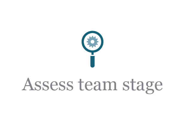 Alignment-Assess-Team-Stage.png