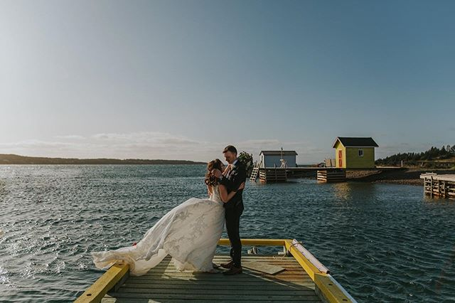 💕 • • • #yyt #yytweddings #newfoundlandphotography #greensharbour #doctorshousenl