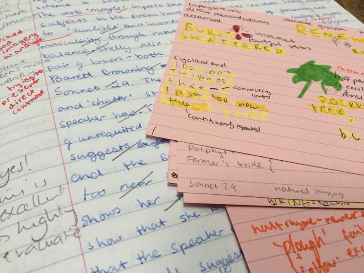 A practice essay and the flashcards I made after re reading the essay. This type of repetition helped me remember important points which I could then use in others essays and in the real exam if the right kind of question came up.