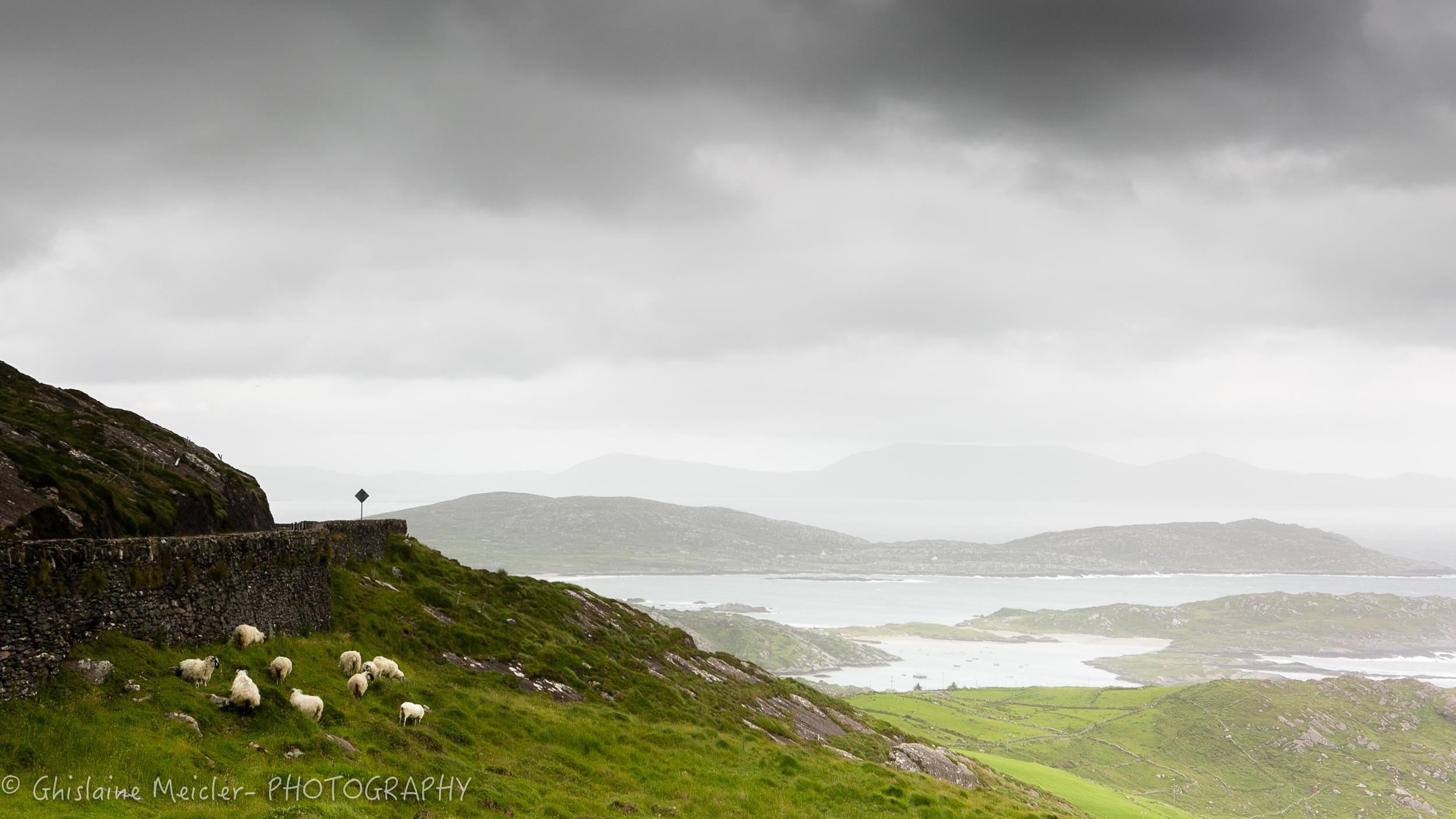 Irlande-480.jpg