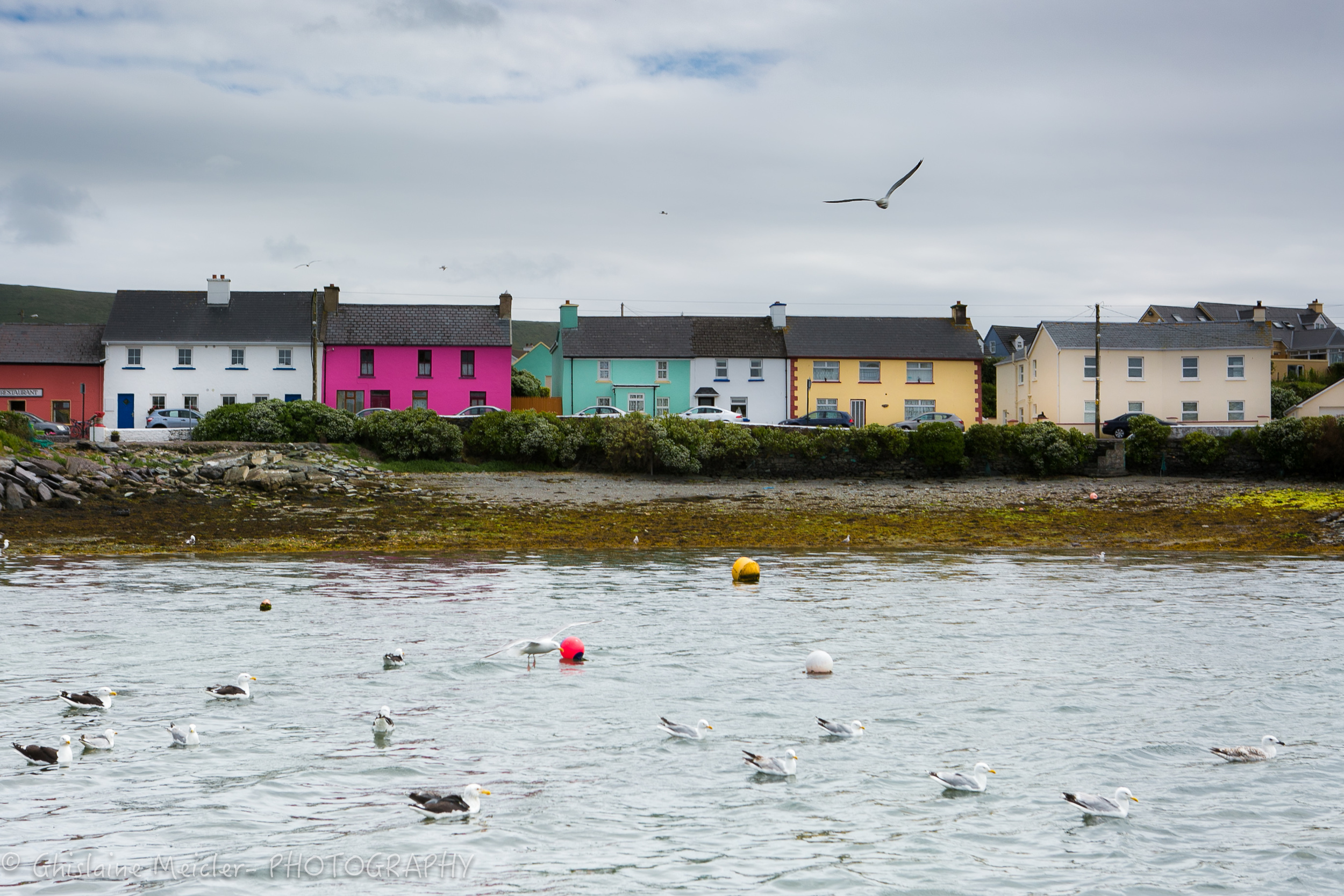 Irlande-904.jpg