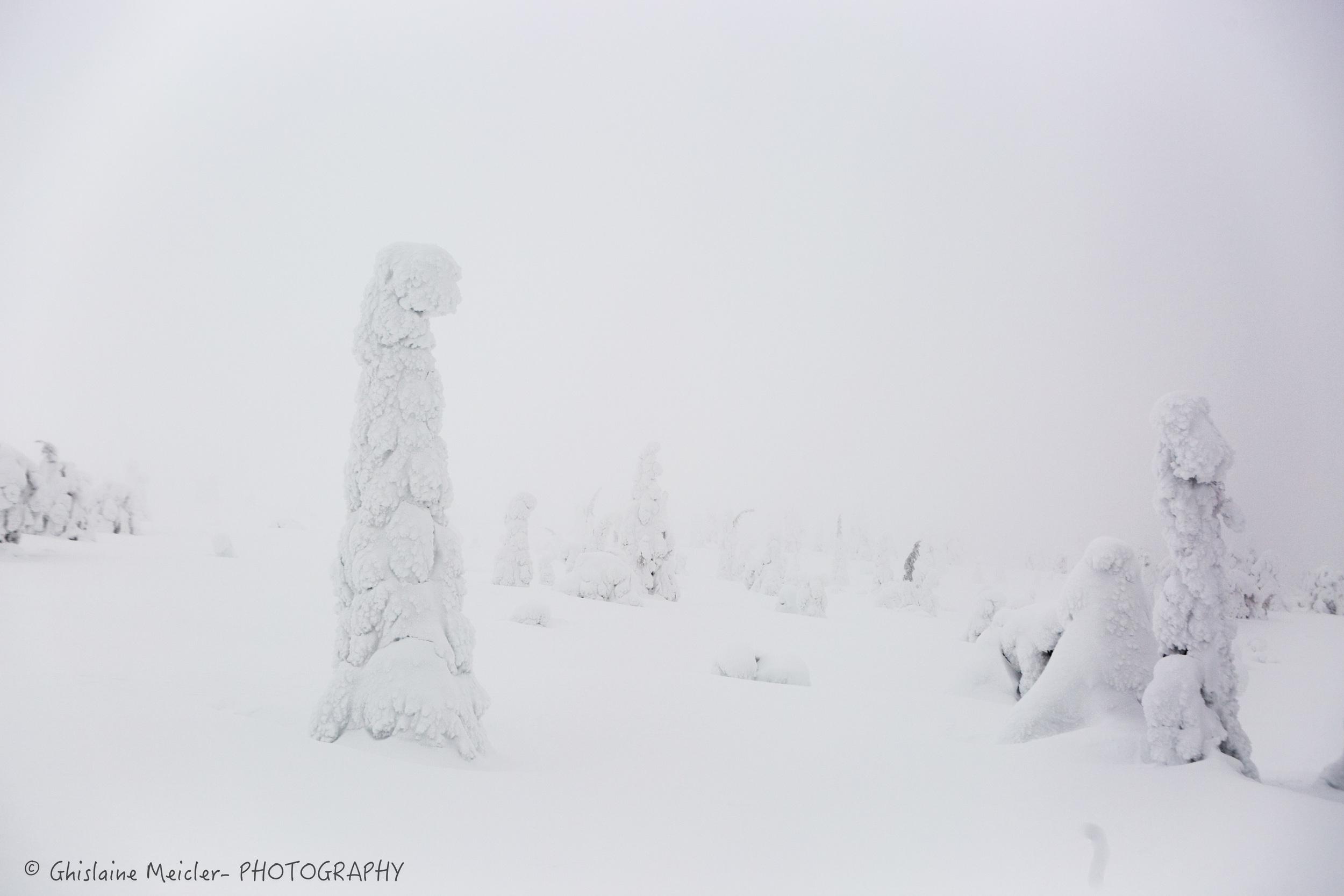 Ghislaine Meicler - Finlande-156.jpg