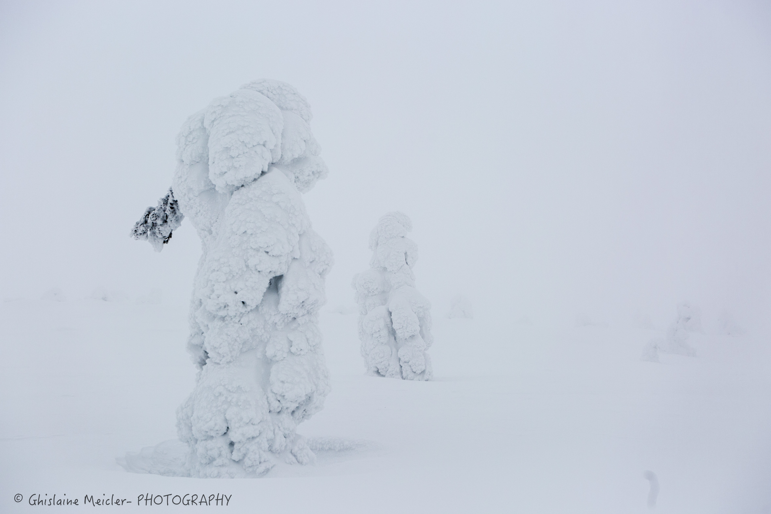 Ghislaine Meicler - Finlande-175.jpg