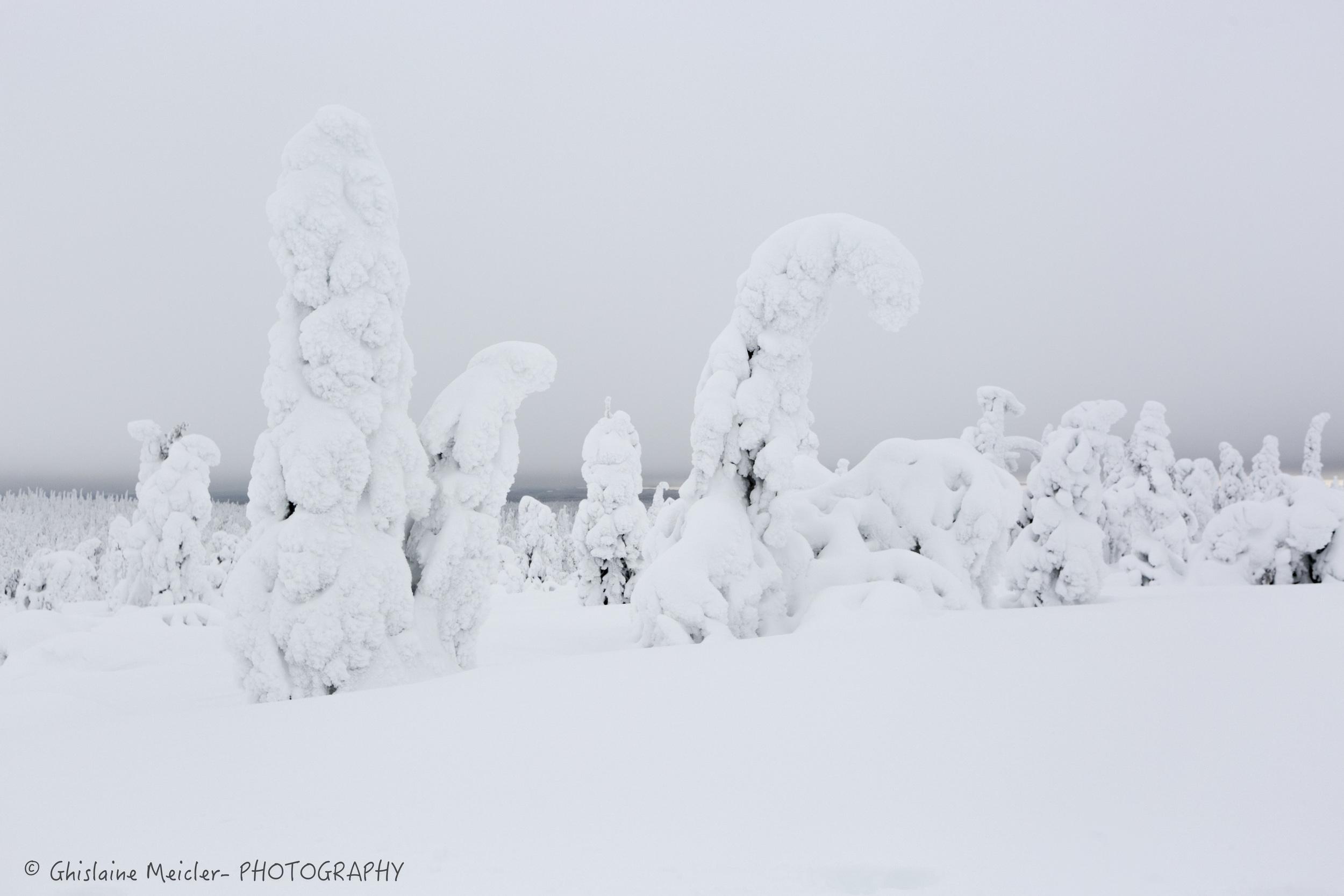Ghislaine Meicler - Finlande-370.jpg