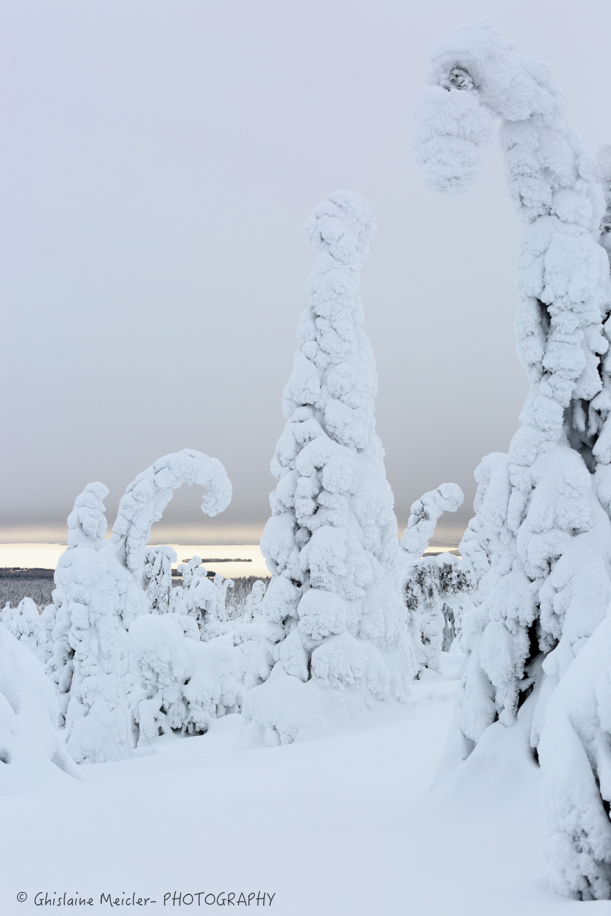 Ghislaine Meicler - Finlande-358.jpg