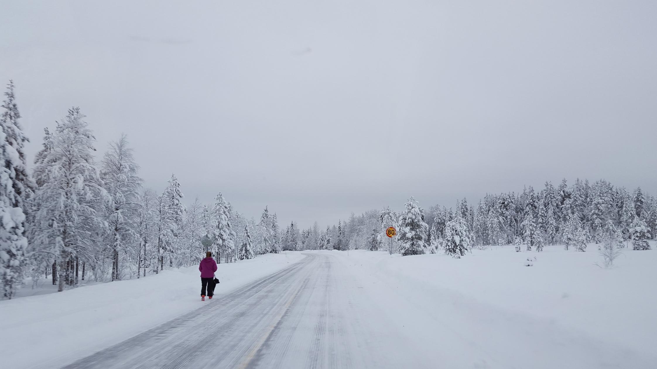 Finlande-131035.jpg