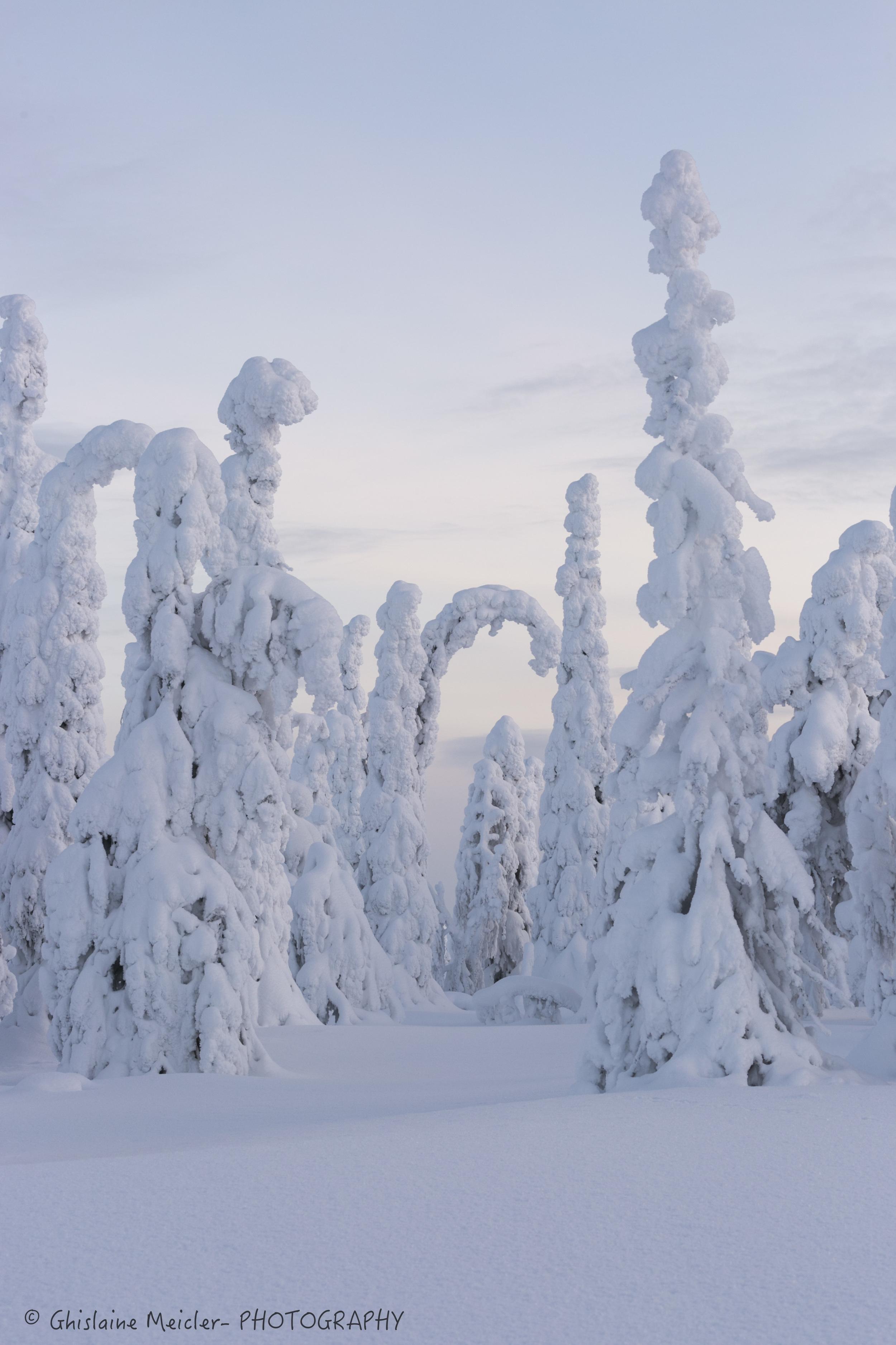 Finlande-32-4.jpg