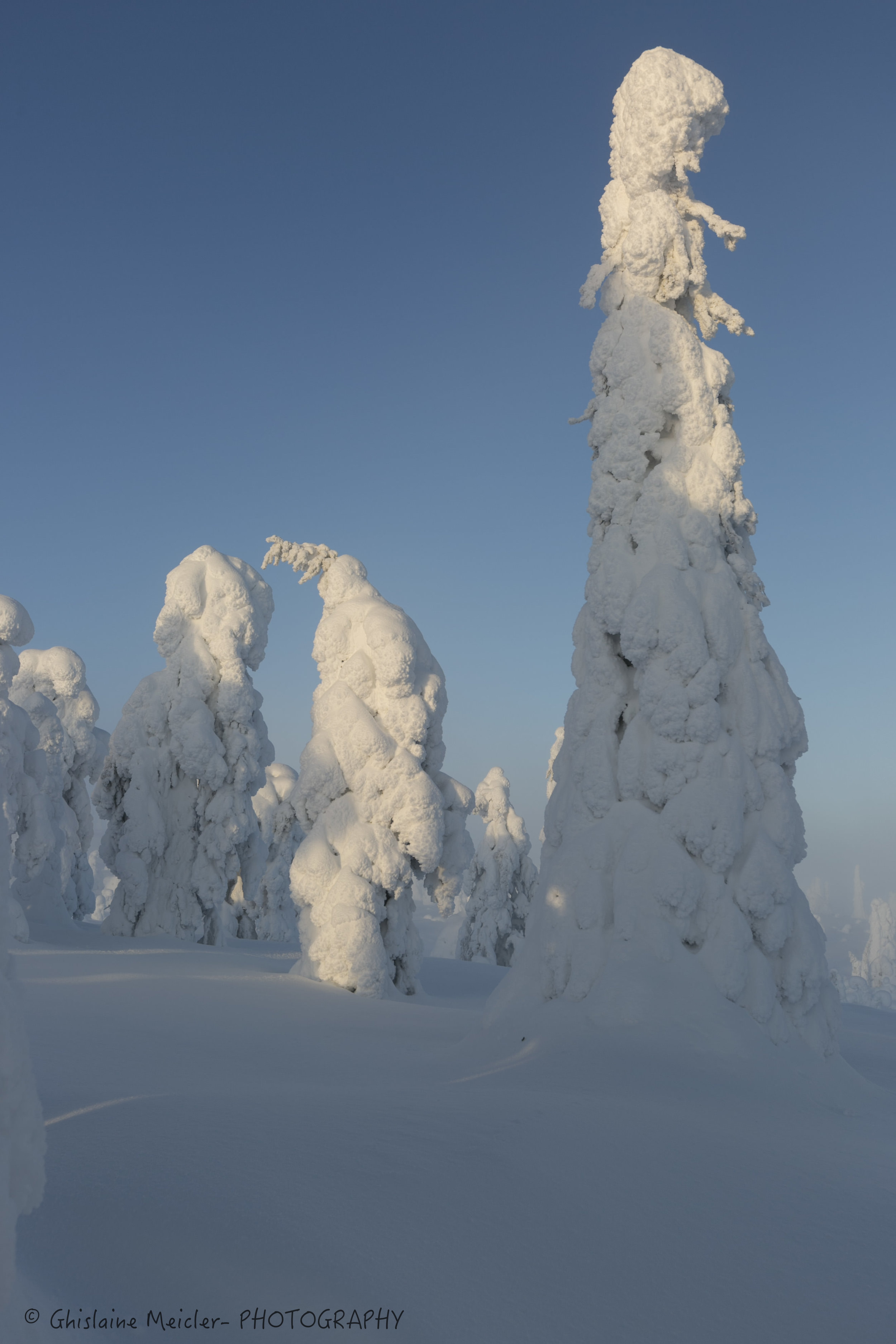 Ghislaine Meicler - Finlande-647.jpg
