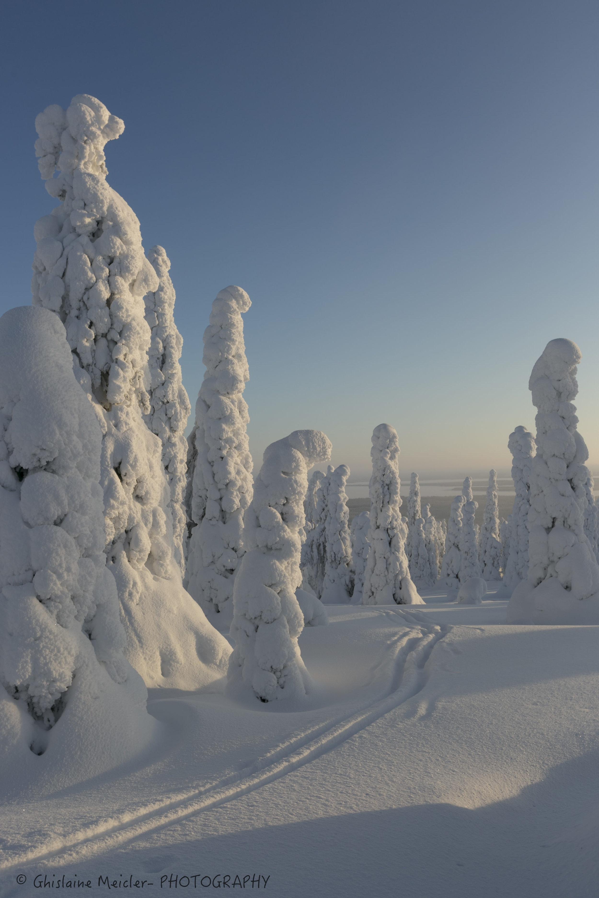 Ghislaine Meicler - Finlande-640.jpg