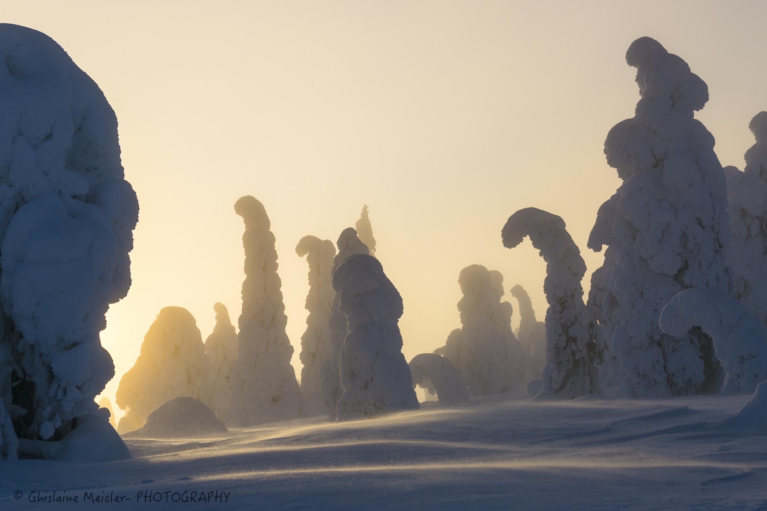 Finlande-672.jpg