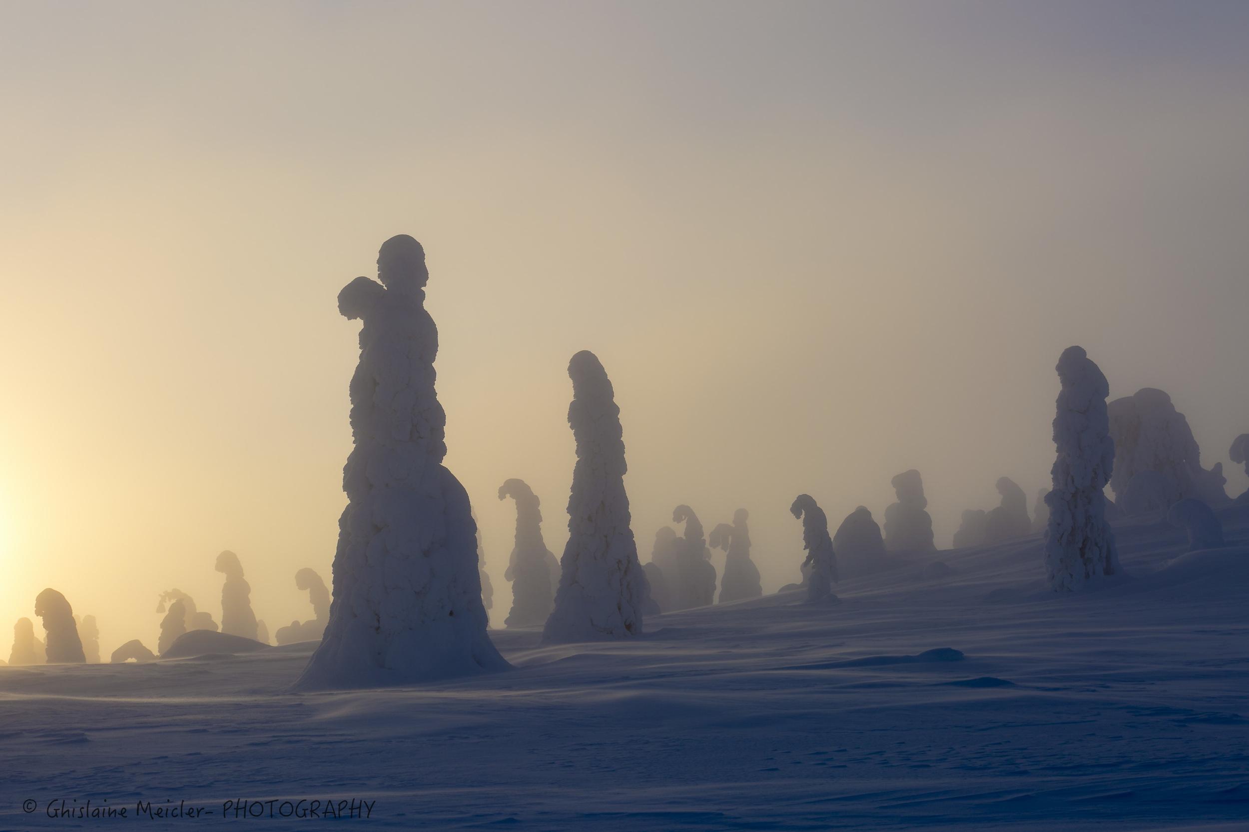 Finlande-676.jpg