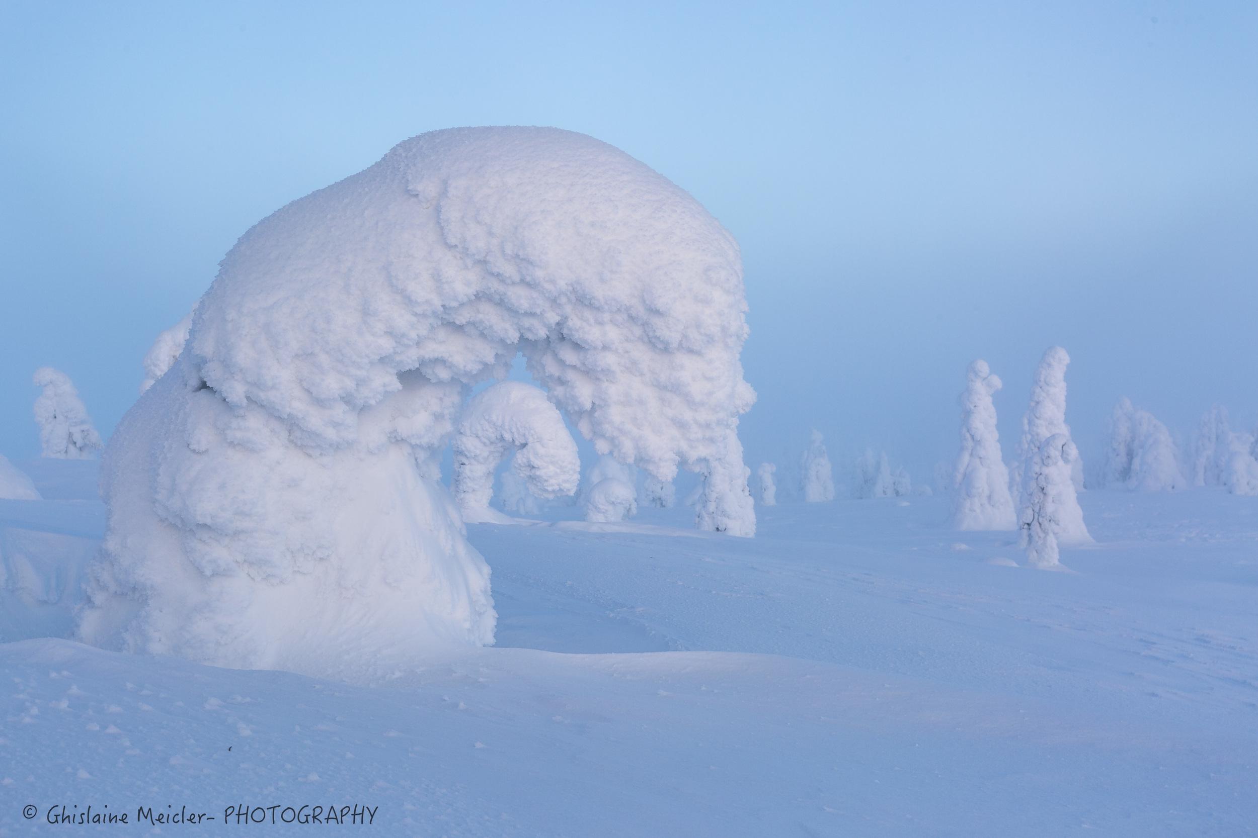 Finlande-722.jpg
