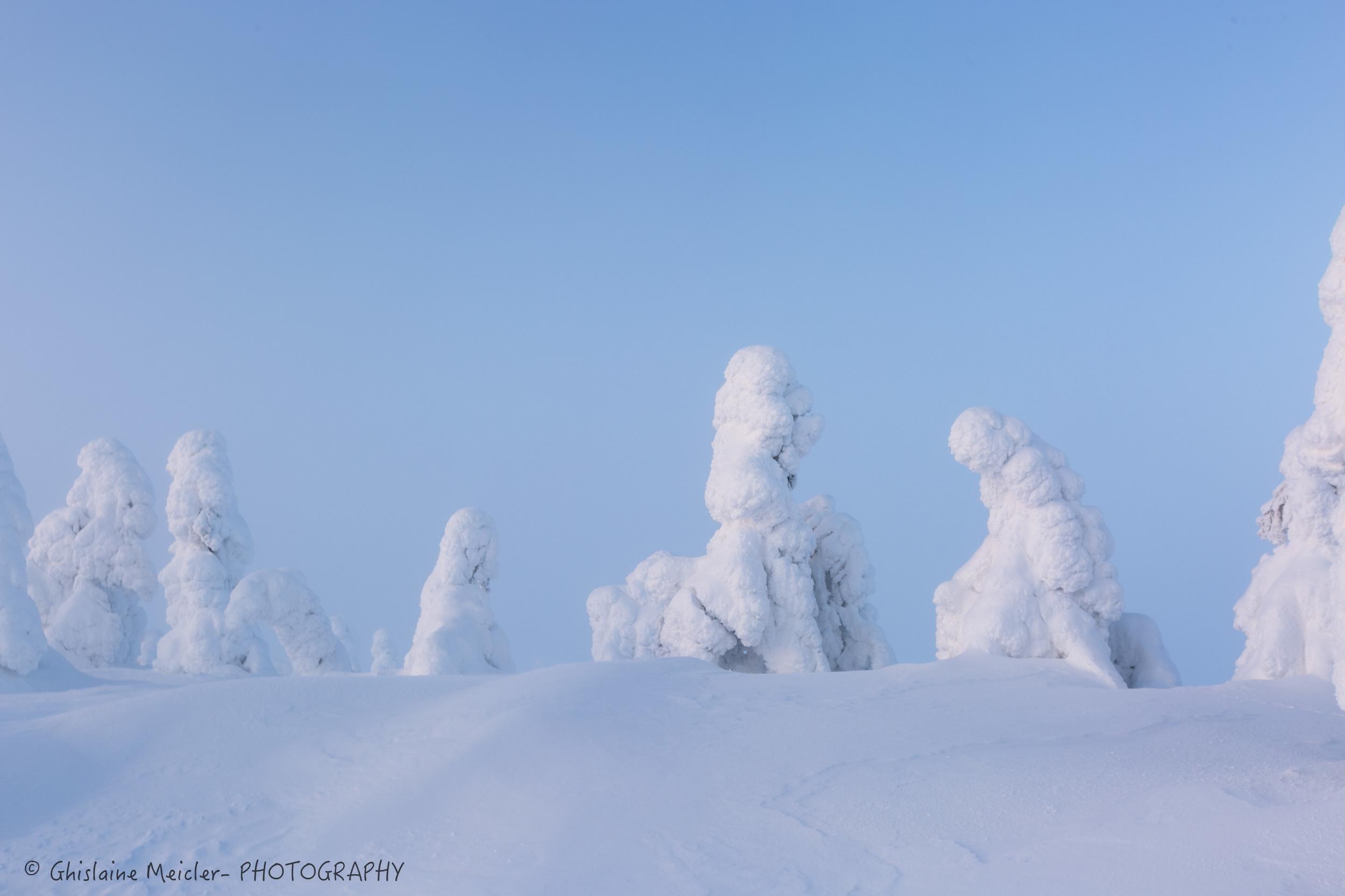 Finlande-734.jpg