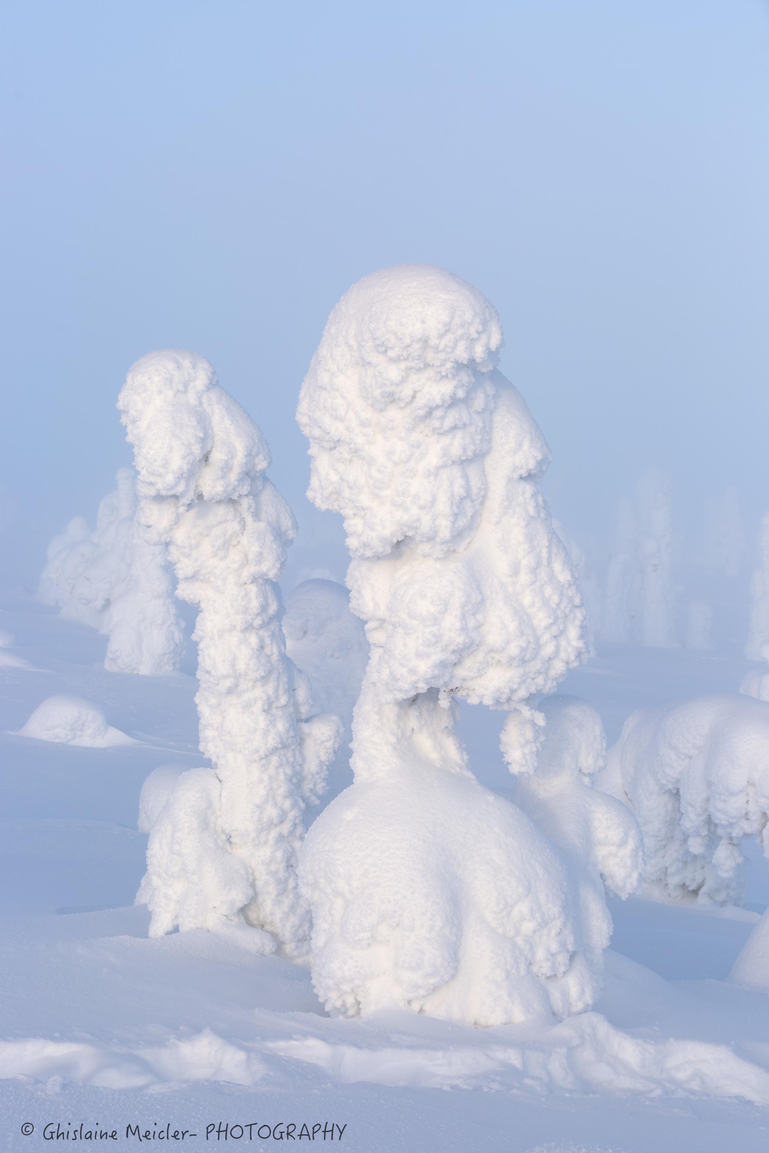 Finlande-679.jpg