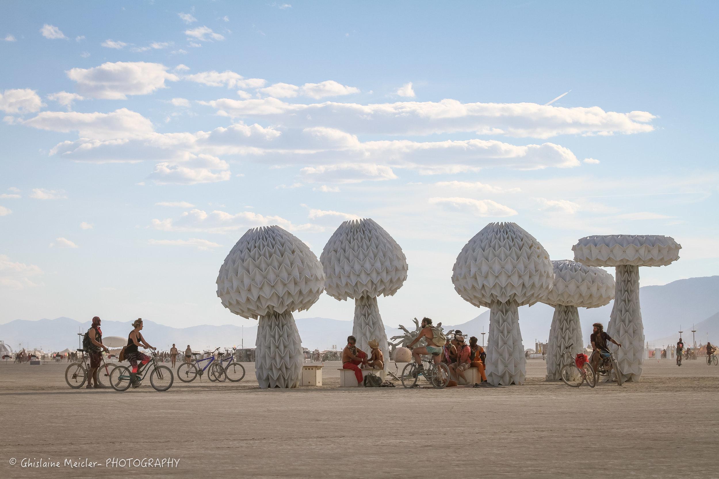 Burning Man-19160.jpg