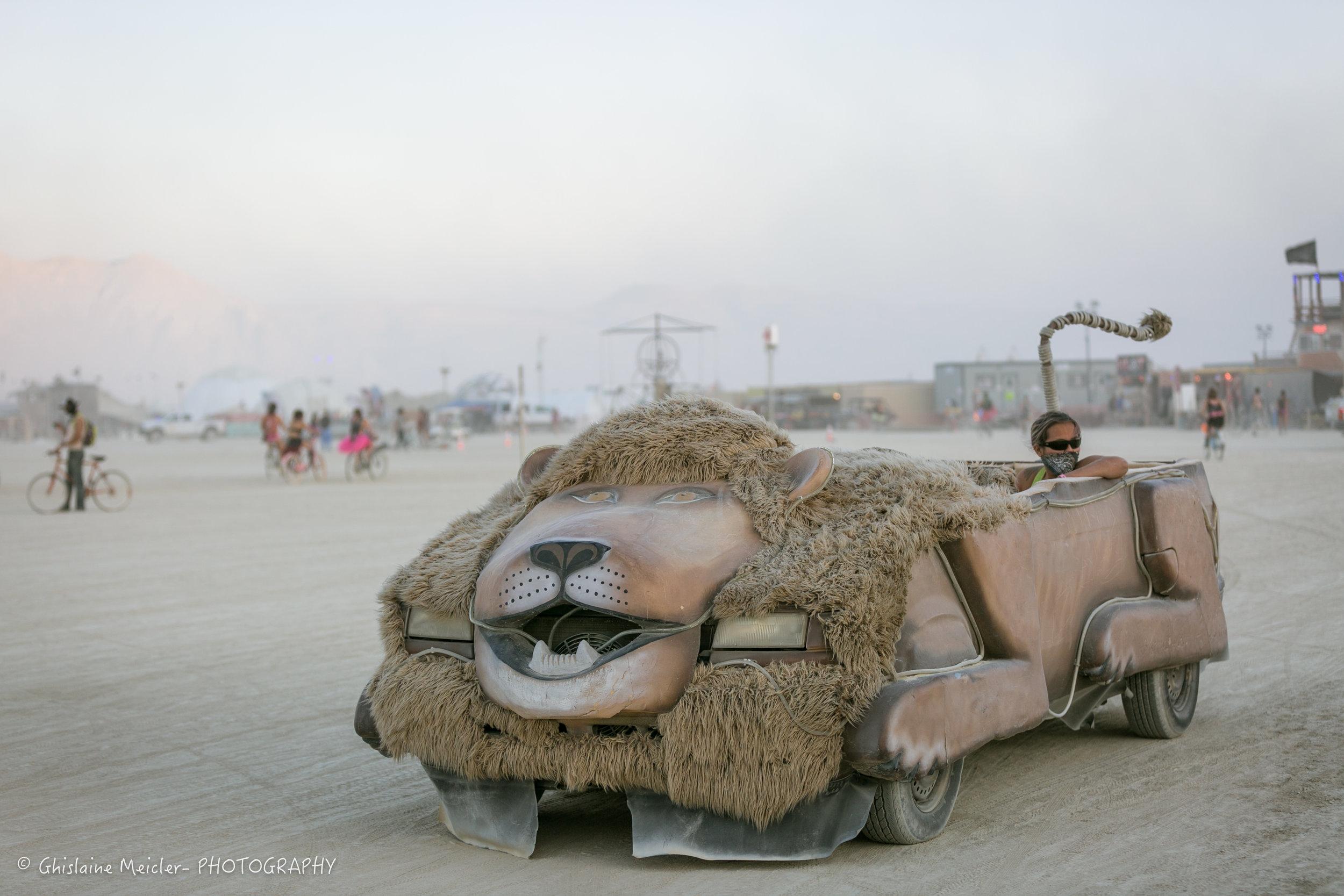 Burning Man-18528.jpg