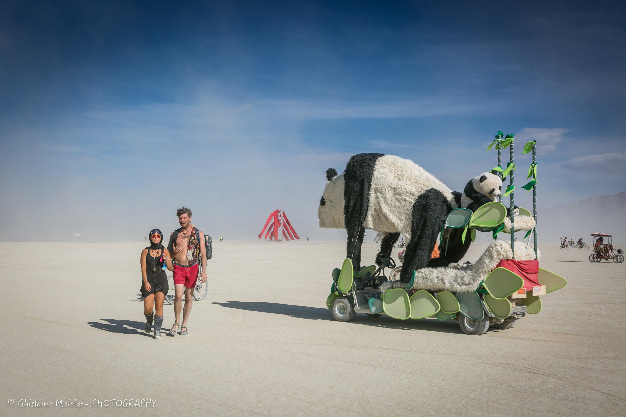 Burning Man-19313.jpg