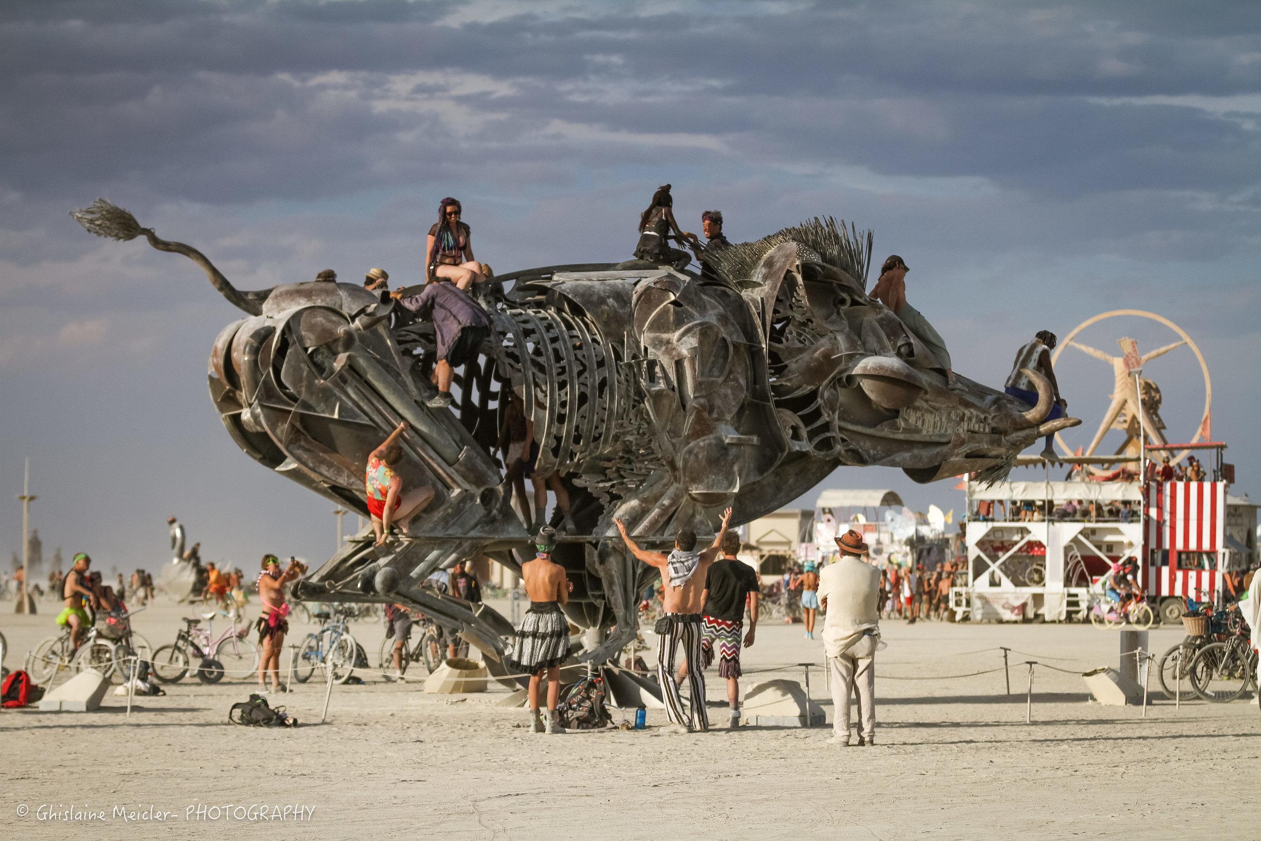Burning Man-19209.jpg