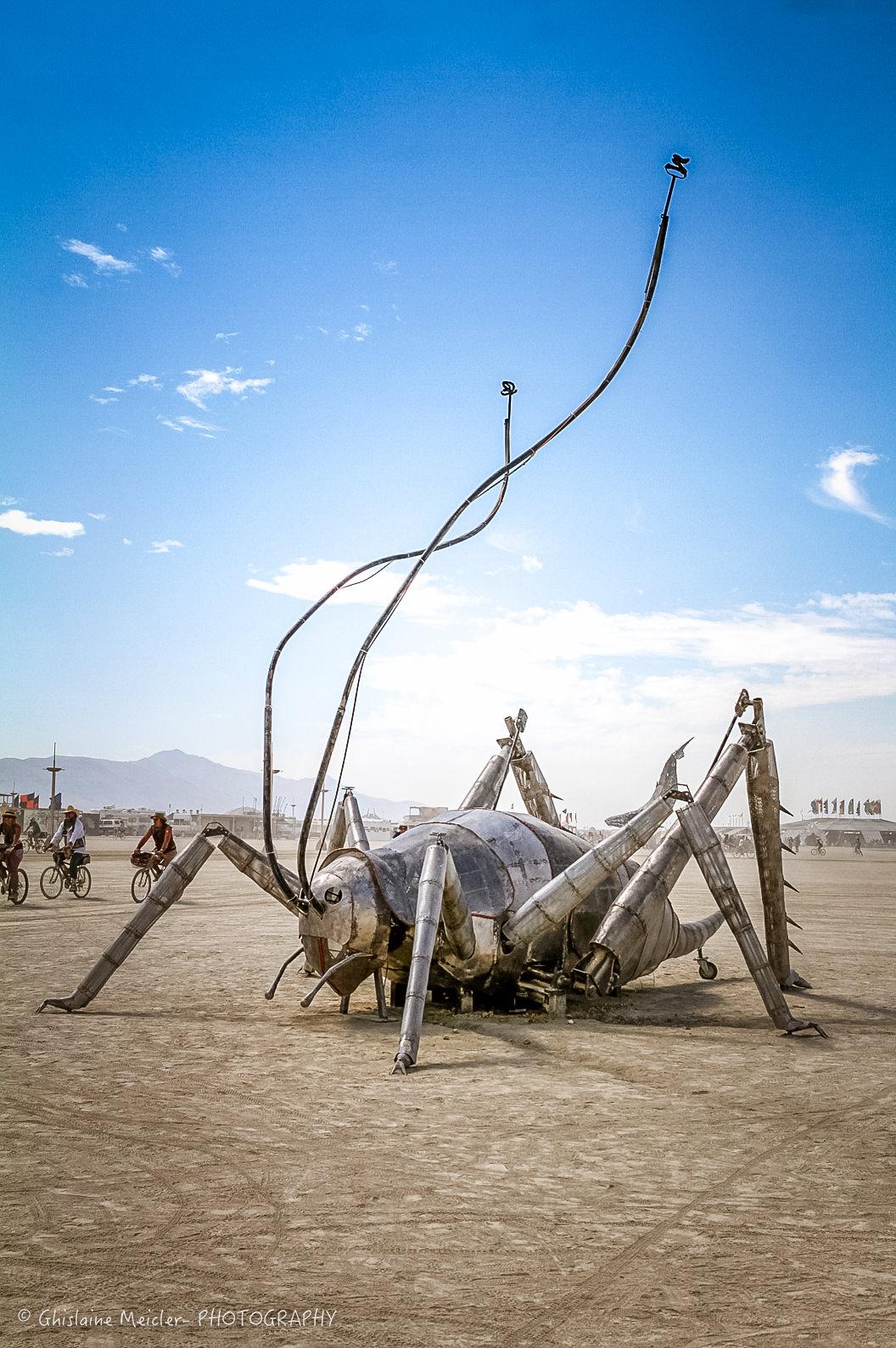Burning Man-20808.jpg