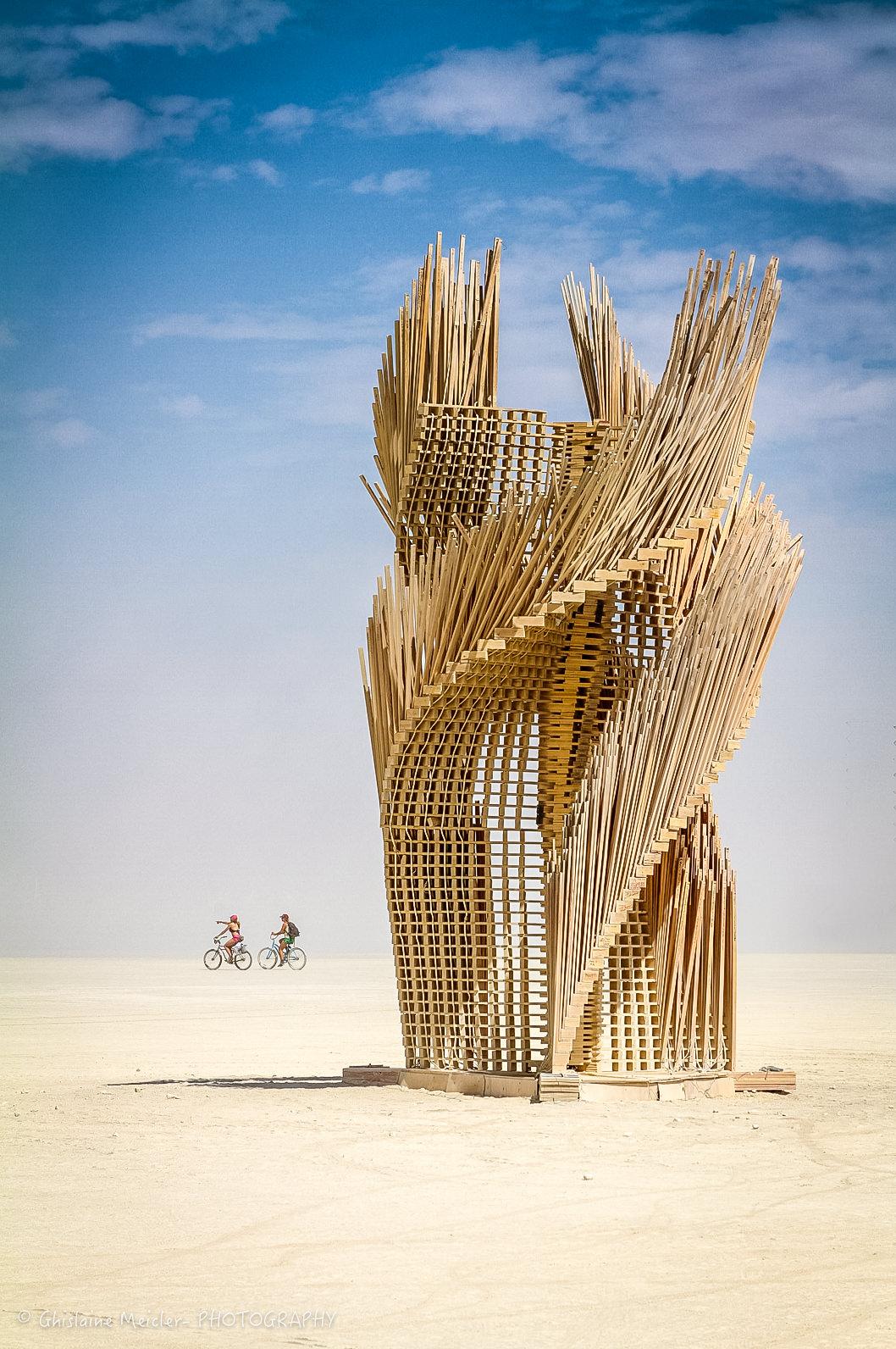 Burning Man-20809.jpg