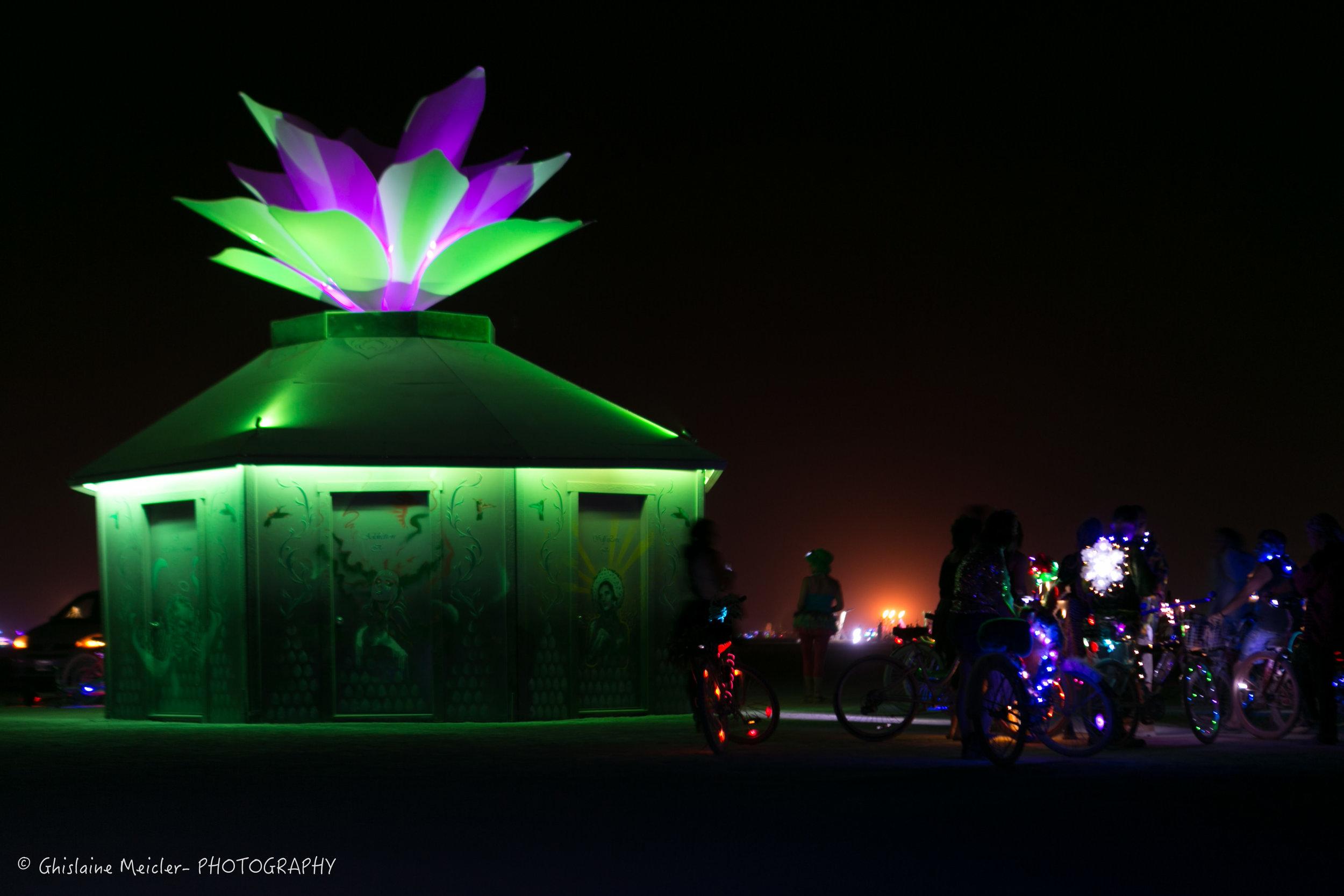 Burning Man-17954.jpg
