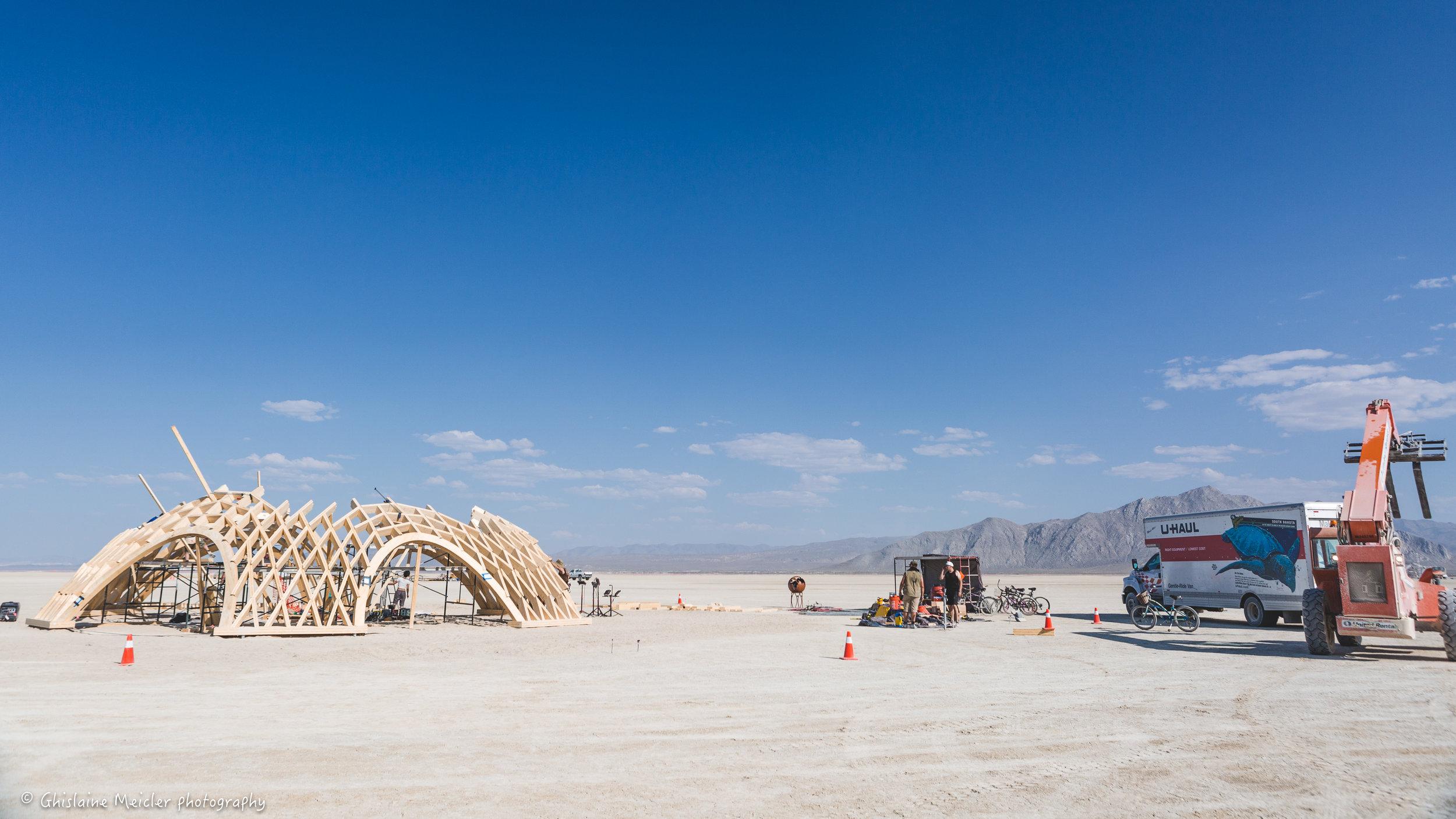Burning Man - 41447.jpg