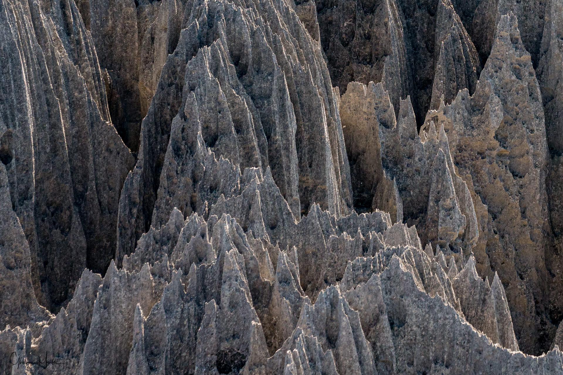 Madagascar--1460.jpg