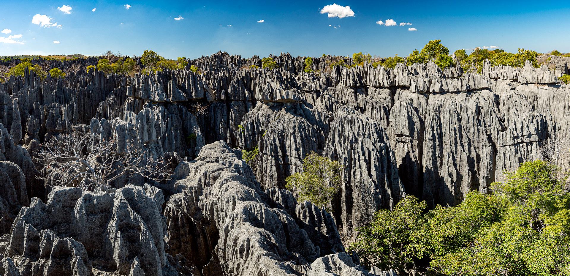 Madagascar--1419-Panorama-Modifier-1.jpg
