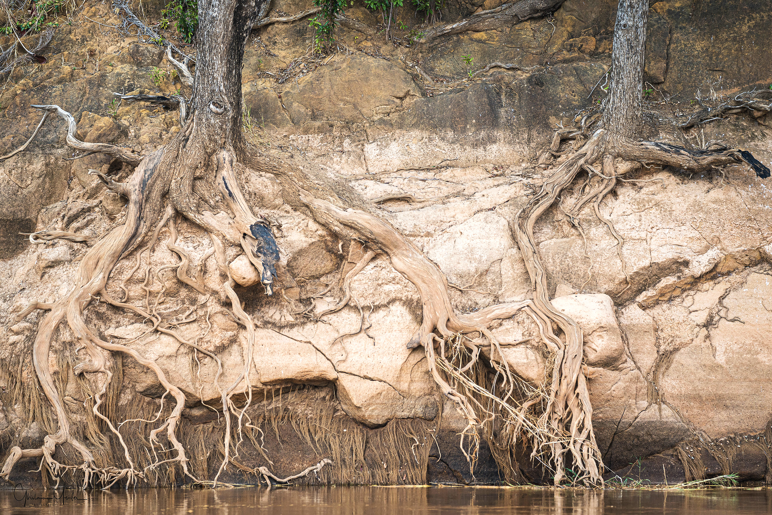 Madagascar-9972.jpg