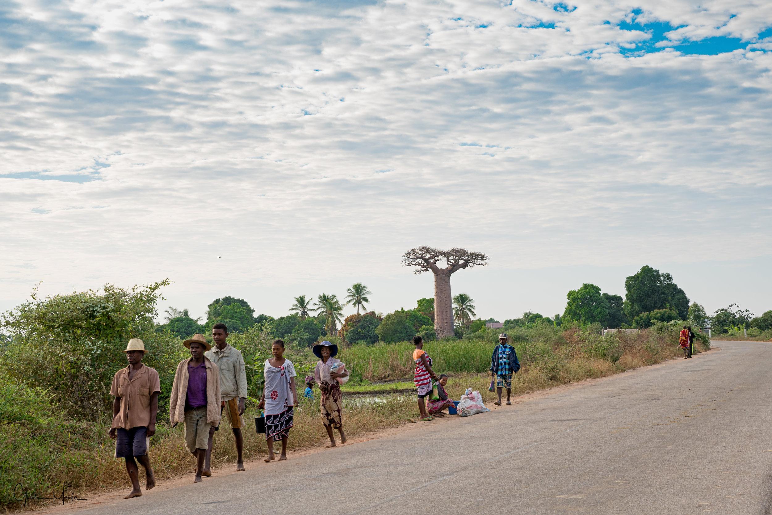 Madagascar--4206-Modifier.jpg