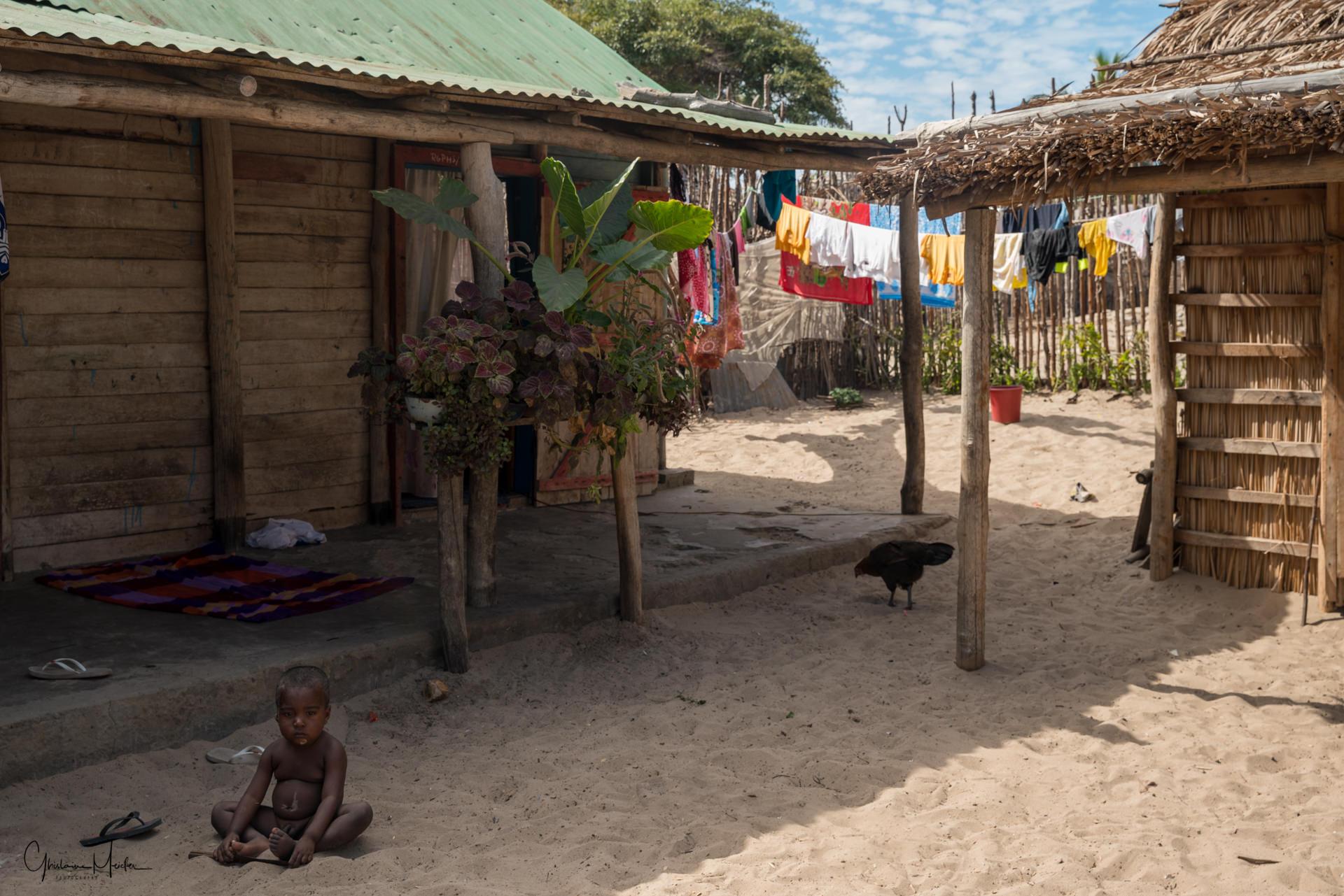 Madagasacr-3236.jpg