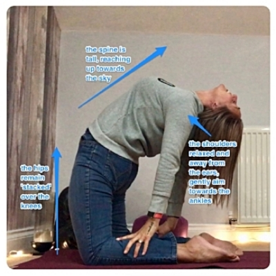 Take this pose with care and only after properly 'warming up'. Think more of this being a chest 'lift'rather than a bend of the back.